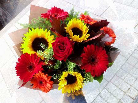 Sunflower & Gerbera Hand tied